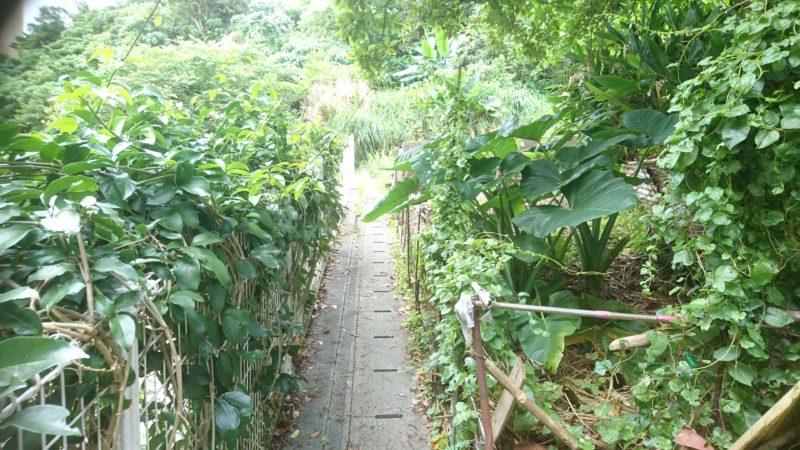 沖縄市室川の室川井(ムルカーガー)への路地