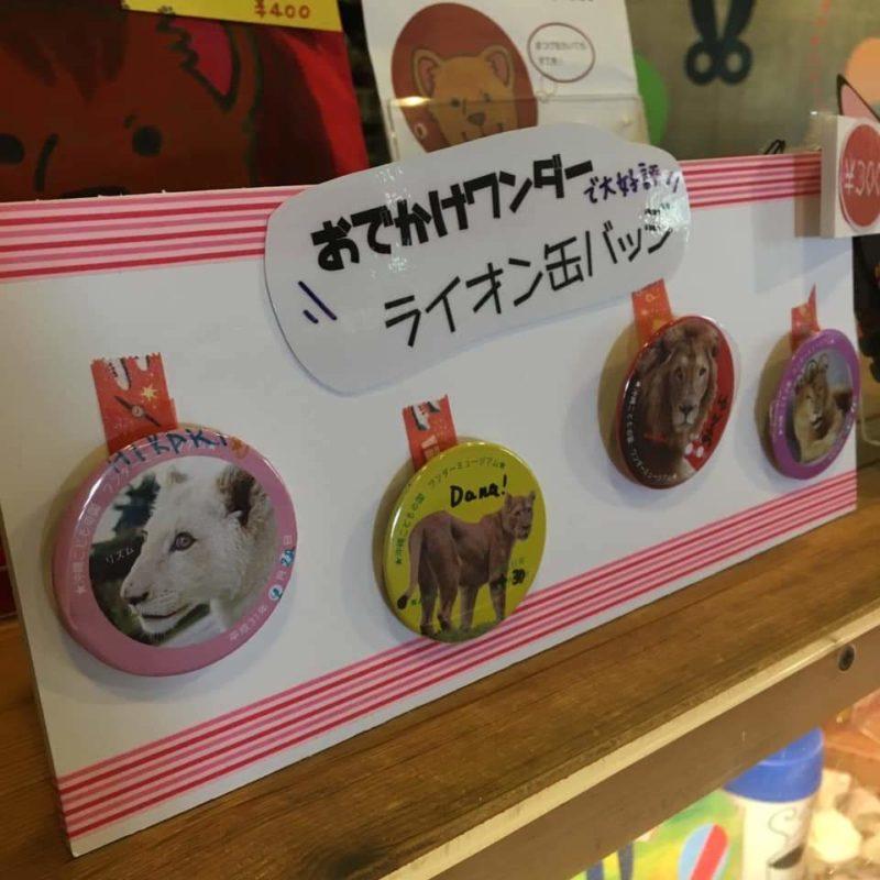 沖縄市こどもの国のライオン缶バッチ