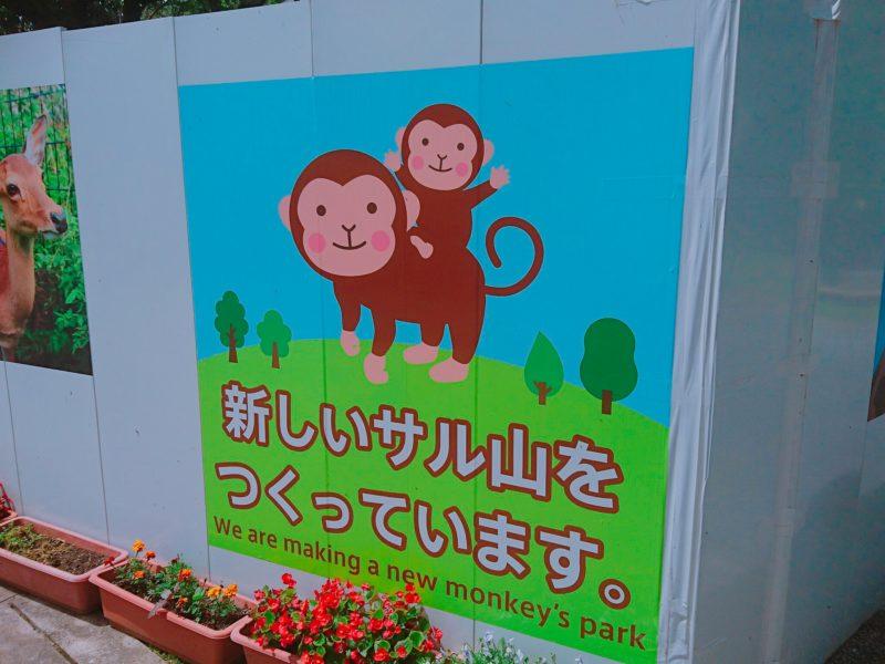 沖縄こどもの国サル山