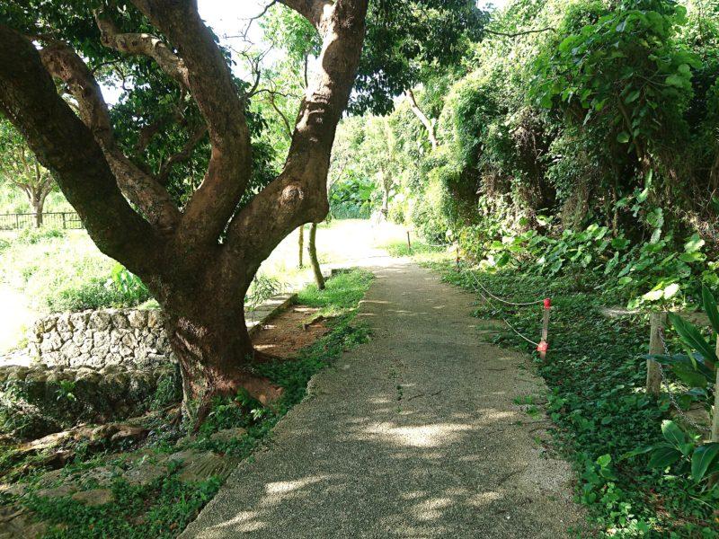 沖縄市知花白川街区公園の遊歩道