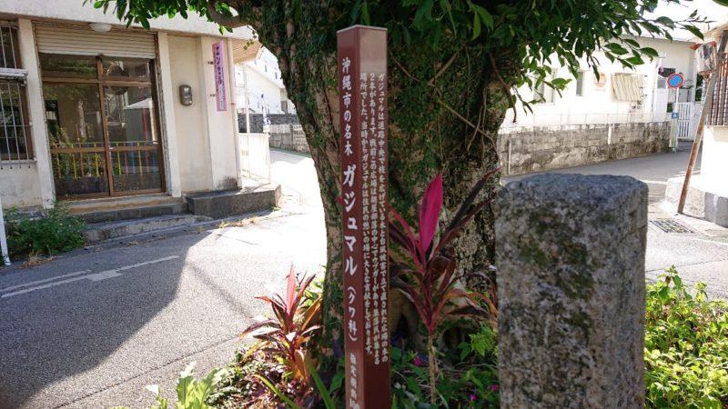 沖縄市胡屋のがじゅまる