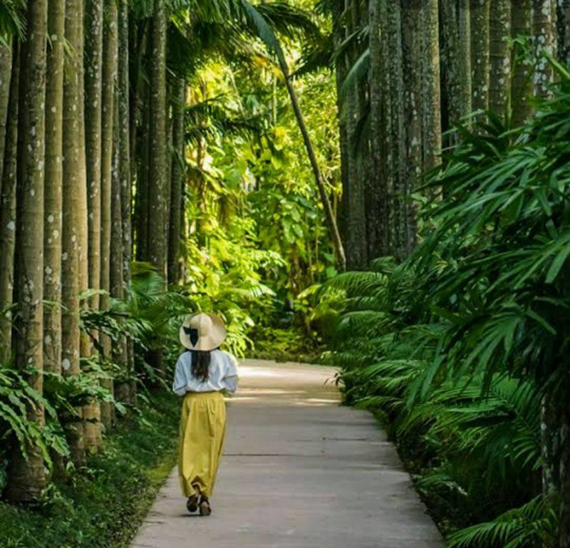 沖縄市東南植物楽園