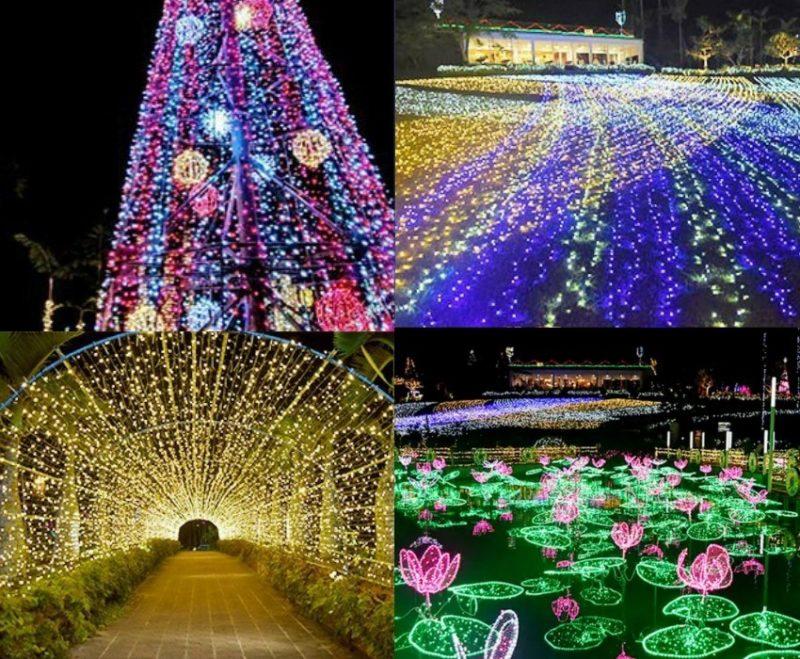 沖縄市東南植物楽園ひかりの散歩道のイルミネーション