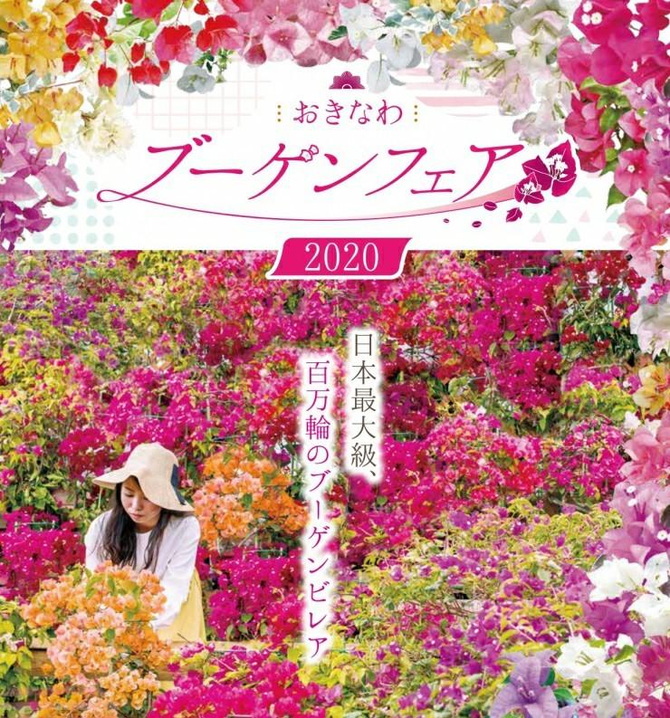 沖縄市東南植物楽園おきなわブーゲンフェア