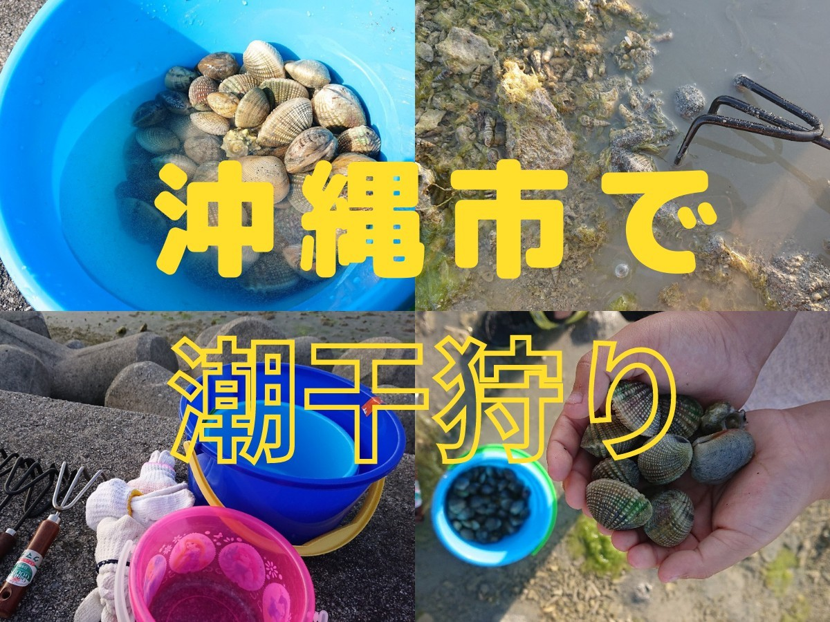 沖縄市で潮干狩り